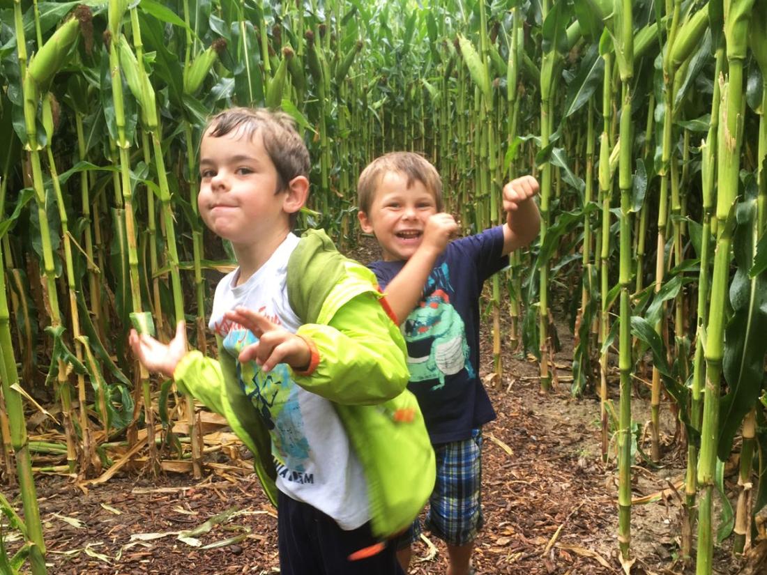 sunnysideofkids, sonnenseite, wandern mit kindern in vorarlberg, vorarlberg wandern kinder, kinder, wandern, maislabyrinth, ausflug mit kindern, was unternehmen mit kindern
