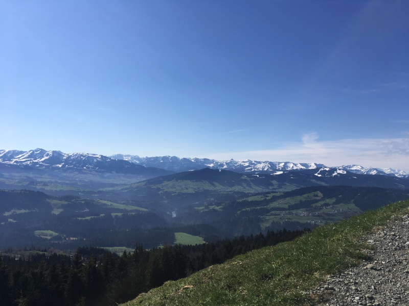 Hirschberg bei Langen, Langen, Bregenz, Wanderung, Unterwegs mit Kindern, Mama Auszeit, schöner Ausblick,