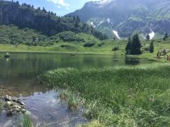 Körbersee, schönster Platz österreichs, 9 schätze 9 plätze, wandern mit kindern in vorarlberg, ausflüge mit familien, wohin heute, wunderschönes panorama, toller ausflug, vorarlberger ausflugsziele